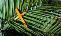 Don't rush past Palm Sunday