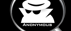 In defense of the NYT's anonymous writer