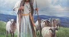 Sunday Reflections: Shepherding